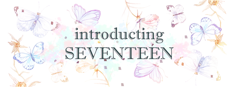 an introduction to SEVENTEEN